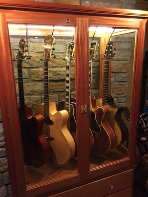 Access N Sight   Guitar Display Case Cabinets